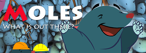 Moles: What is out there?